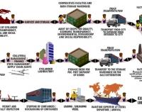 Exportation & Importation